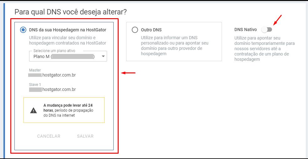 selecione o DNS da hostgator - Como Criar Um Site: Passo a Passo Simples e Sem Contratar Especialista