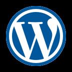 icons8 wordpress 144 - Ferramentas Que Eu Uso